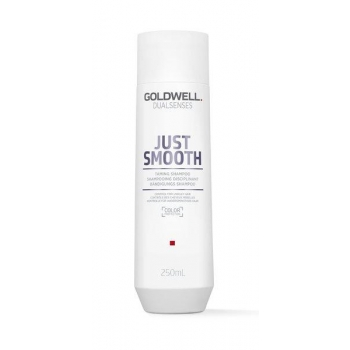 Goldwell DS Just Smooth Taming Shampoo 250ml