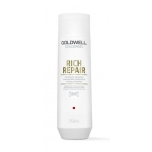 Goldwell DS Rich Repair Restoring Shampoo 250ml Taastav šampoon